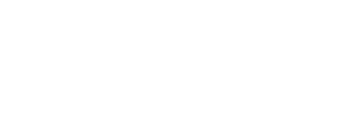 Black Swan TechnologyAn innovative company that brings out Revolutionary Solutions
